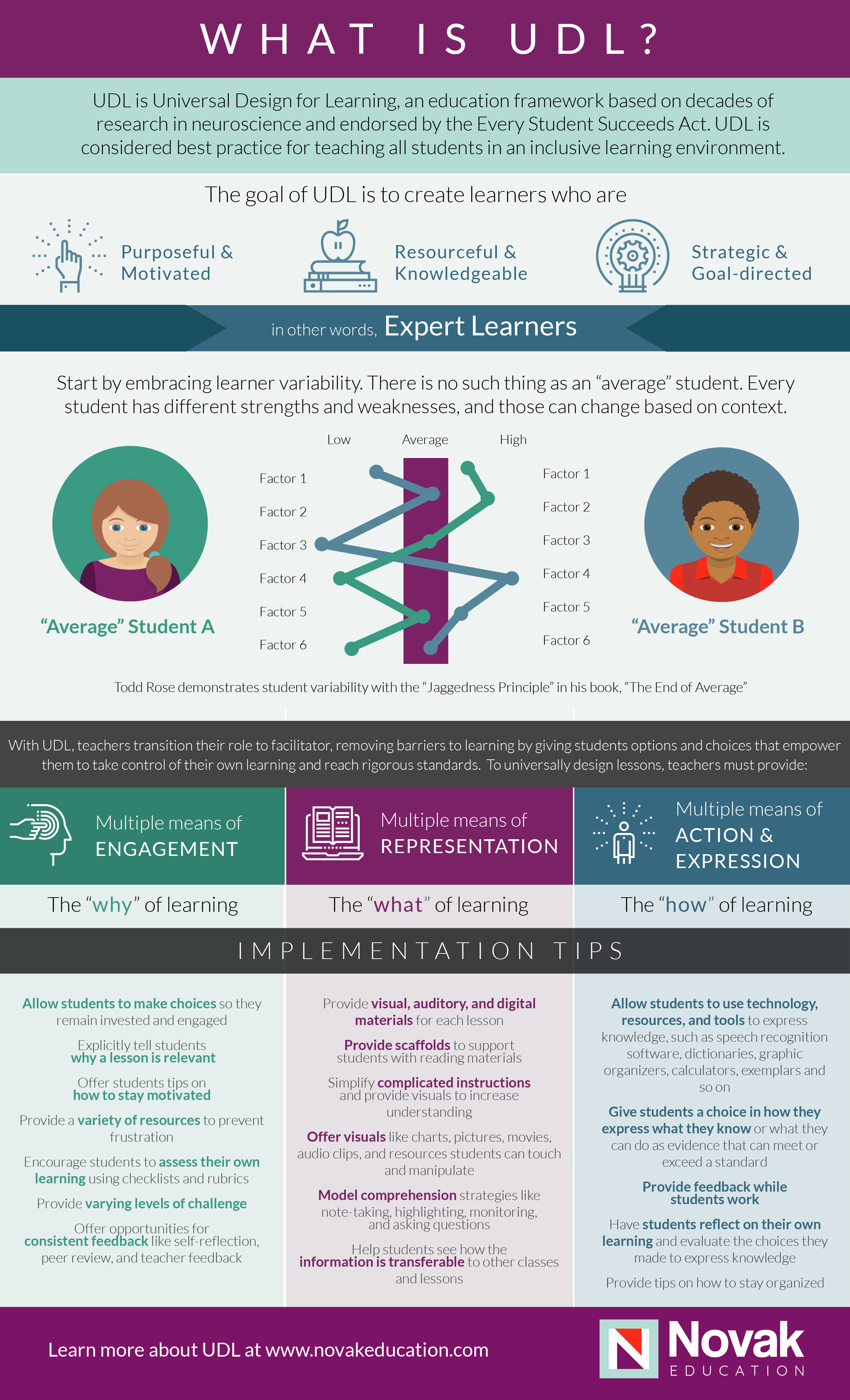 UDL Infographic